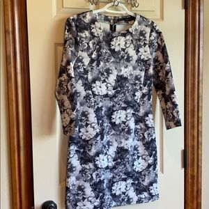 Zara Basic floral fitted dress